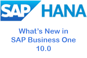 SAP Business One 10.0 What's New