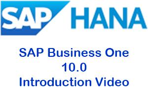 Intro Video SAP B1 10