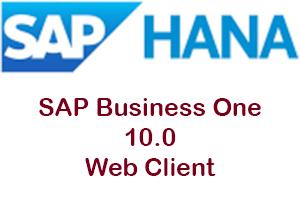 Web Client SAP B1 10