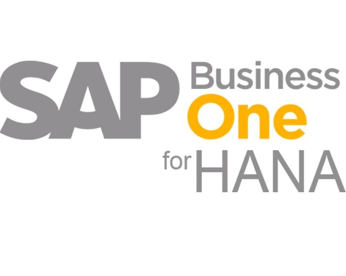 SAP B1 HANA Feature